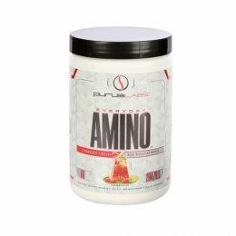 Everyday Amino (264g)